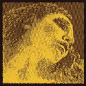 Pirastro Evah Pirazzi Gold pour alto